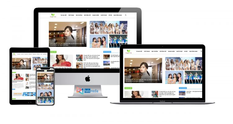 thiet ke website tin tuc chuan seo halo media